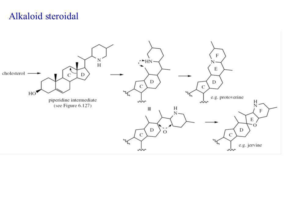 Alkaloid steroidal