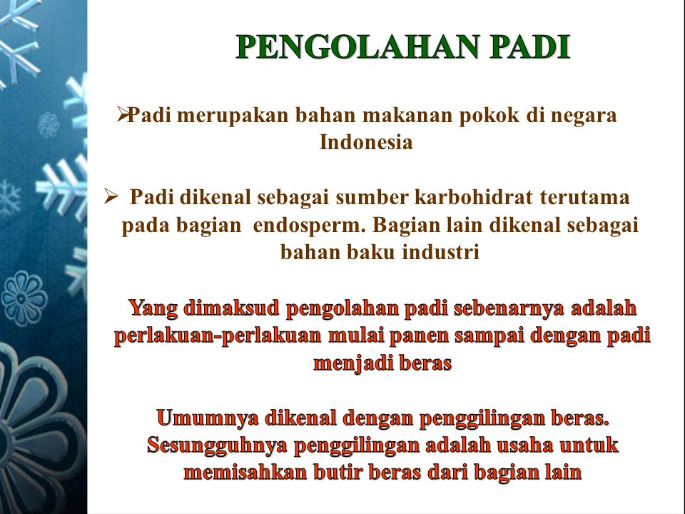 Padi merupakan bahan makanan pokok di negara Indonesia