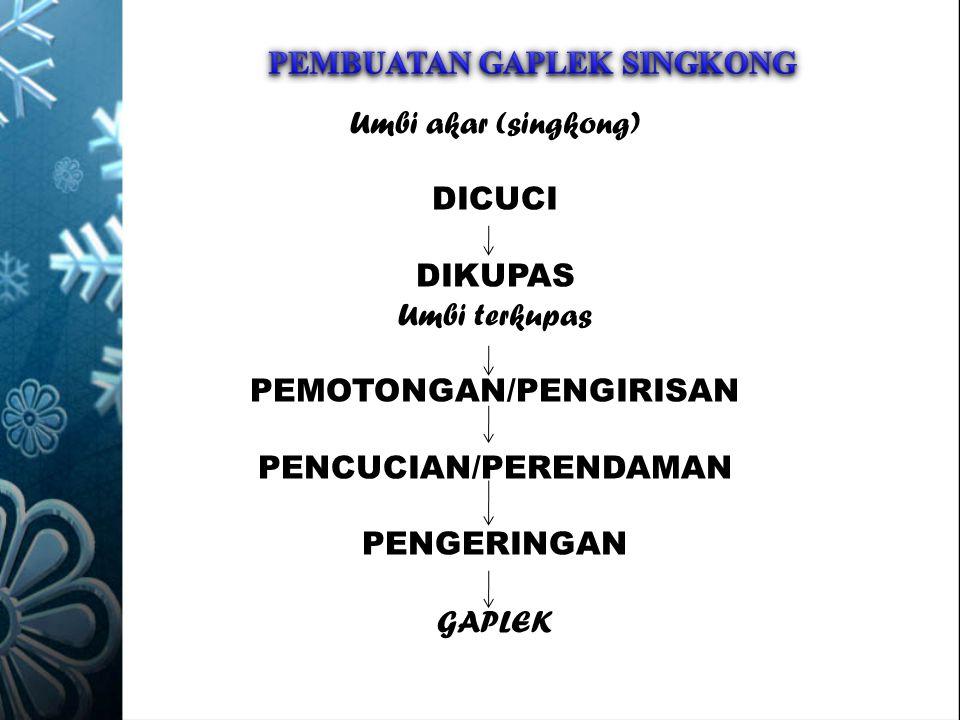 PEMBUATAN GAPLEK SINGKONG