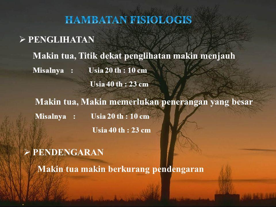 HAMBATAN FISIOLOGIS PENGLIHATAN