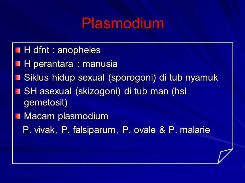 Plasmodium H dfnt : anopheles H perantara : manusia