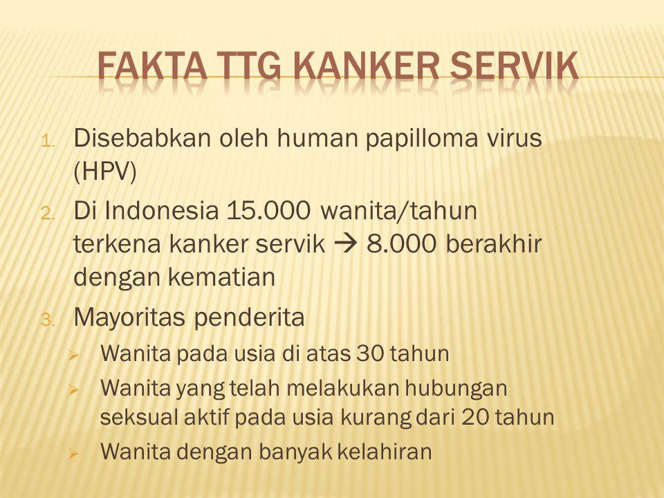 Fakta ttg kanker servik