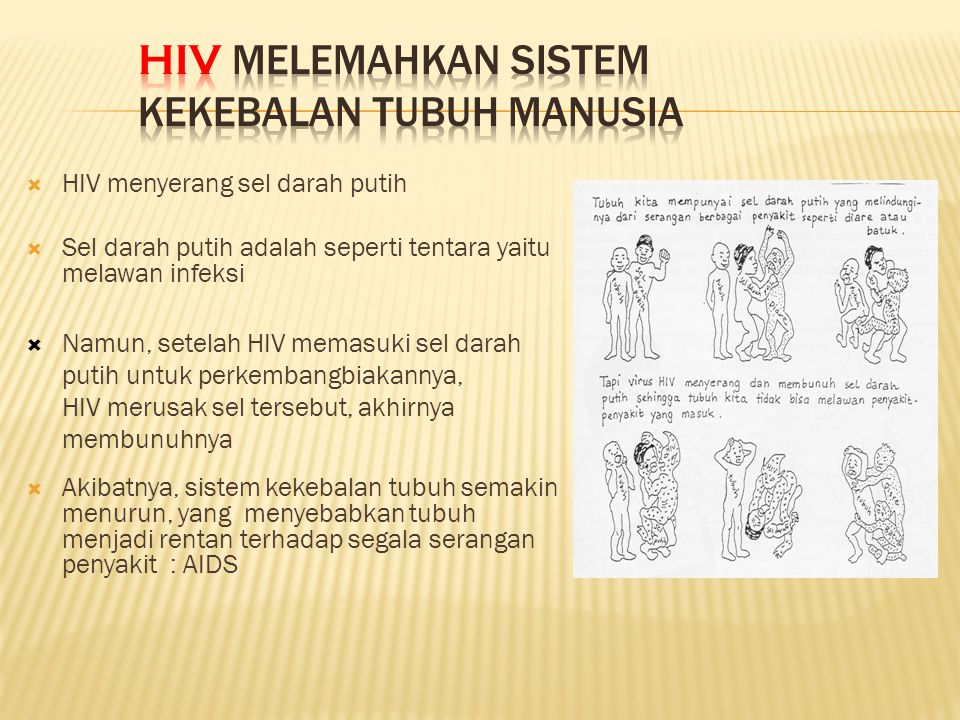 HIV melemahkan sistem kekebalan tubuh manusia