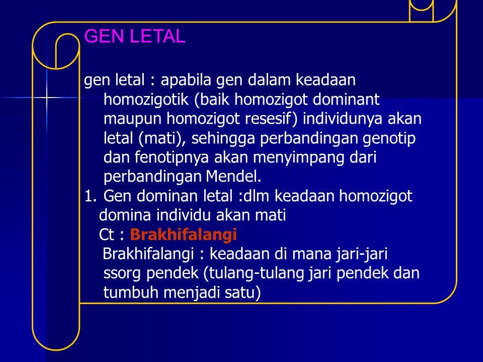 GEN LETAL