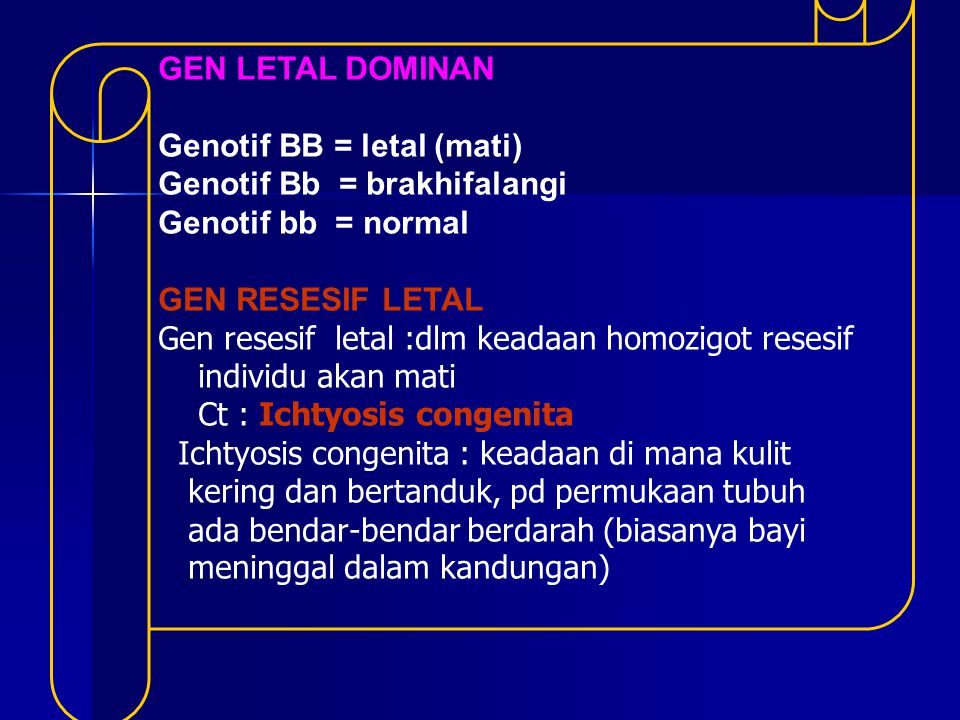 GEN LETAL DOMINAN Genotif BB = letal (mati) Genotif Bb = brakhifalangi. Genotif bb = normal. GEN RESESIF LETAL.