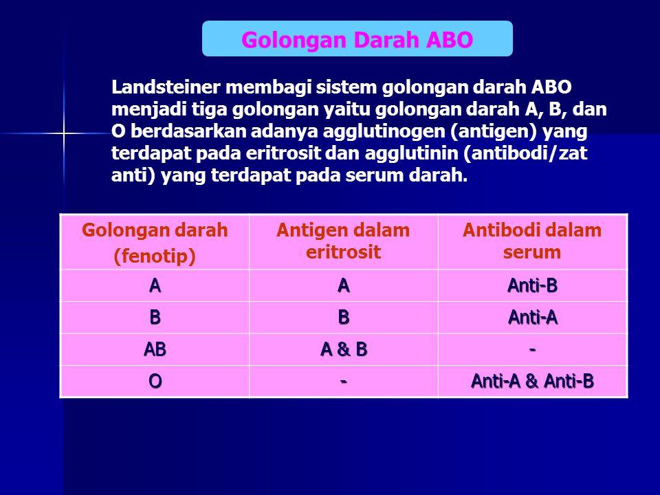 Antigen dalam eritrosit