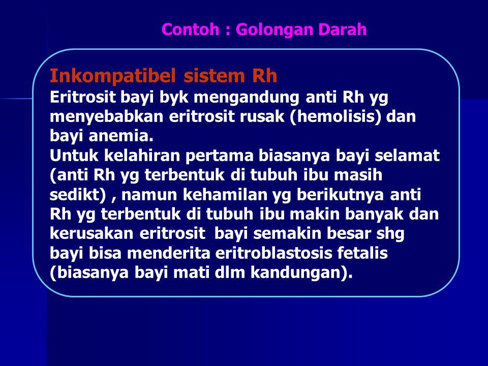 Contoh : Golongan Darah