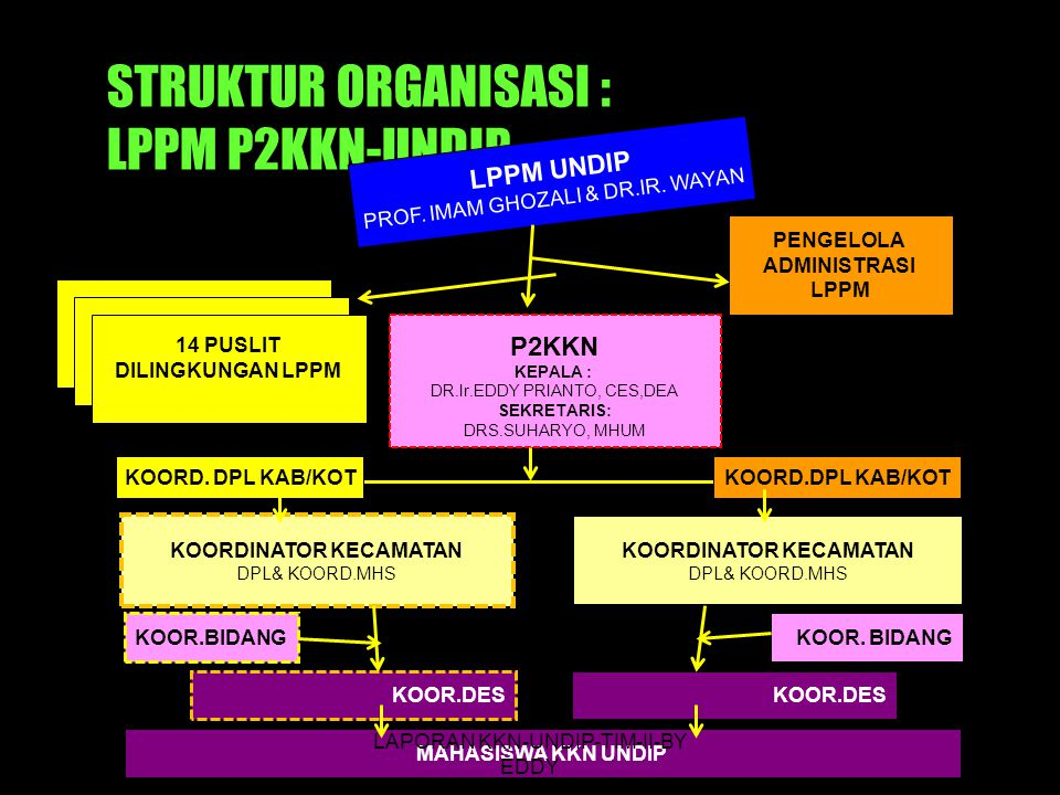 STRUKTUR ORGANISASI : LPPM P2KKN-UNDIP