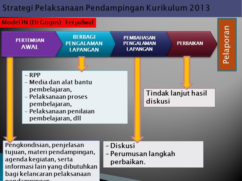 Strategi Pelaksanaan Pendampingan Kurikulum 2013