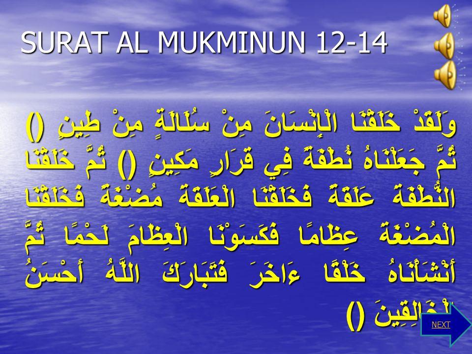 SURAT AL MUKMINUN 12-14