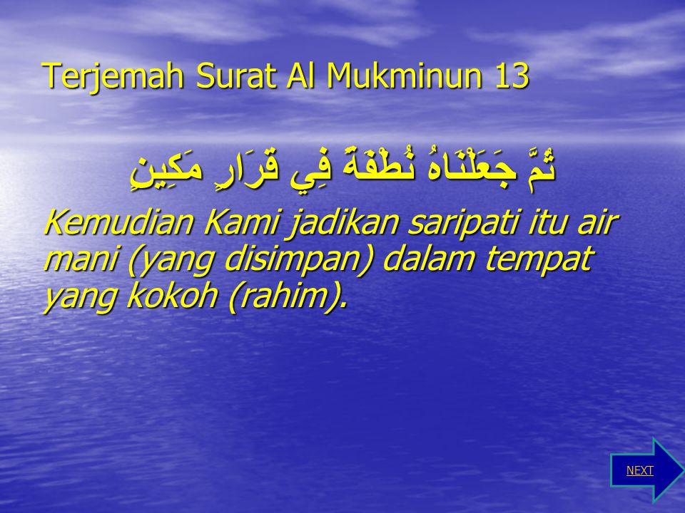 Terjemah Surat Al Mukminun 13