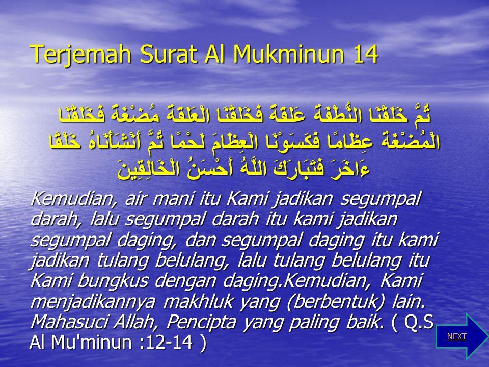 Terjemah Surat Al Mukminun 14