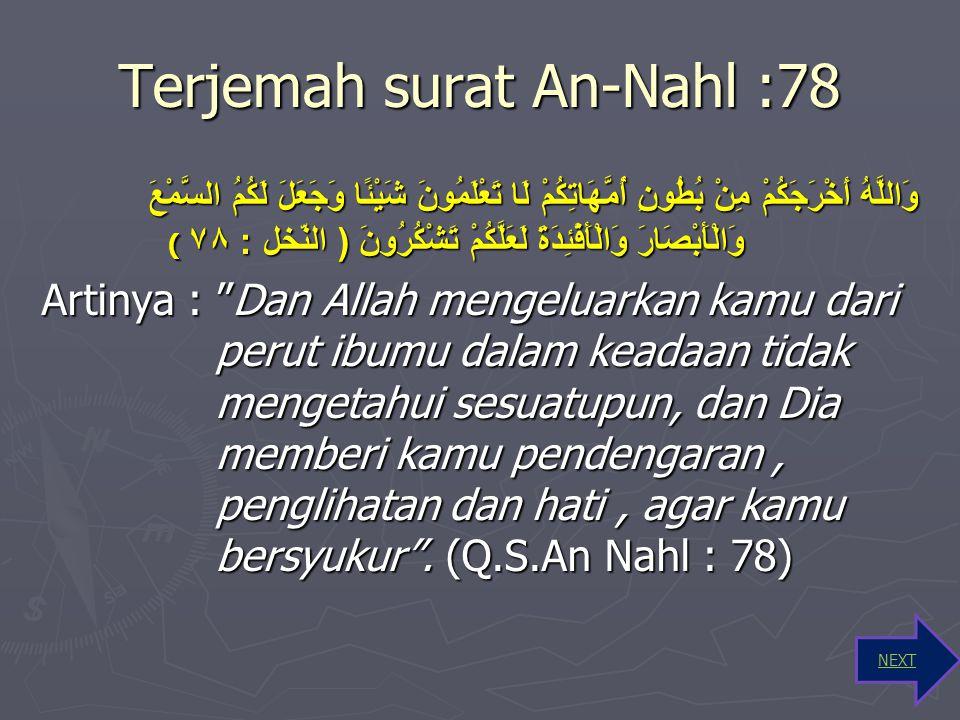 Terjemah surat An-Nahl :78