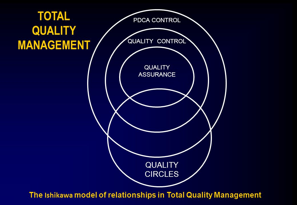 The Ishikawa model of relationships in Total Quality Management