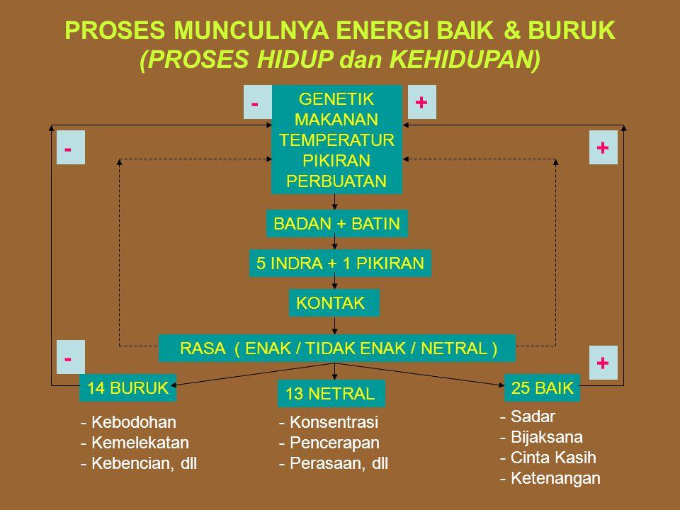 PROSES MUNCULNYA ENERGI BAIK & BURUK (PROSES HIDUP dan KEHIDUPAN)