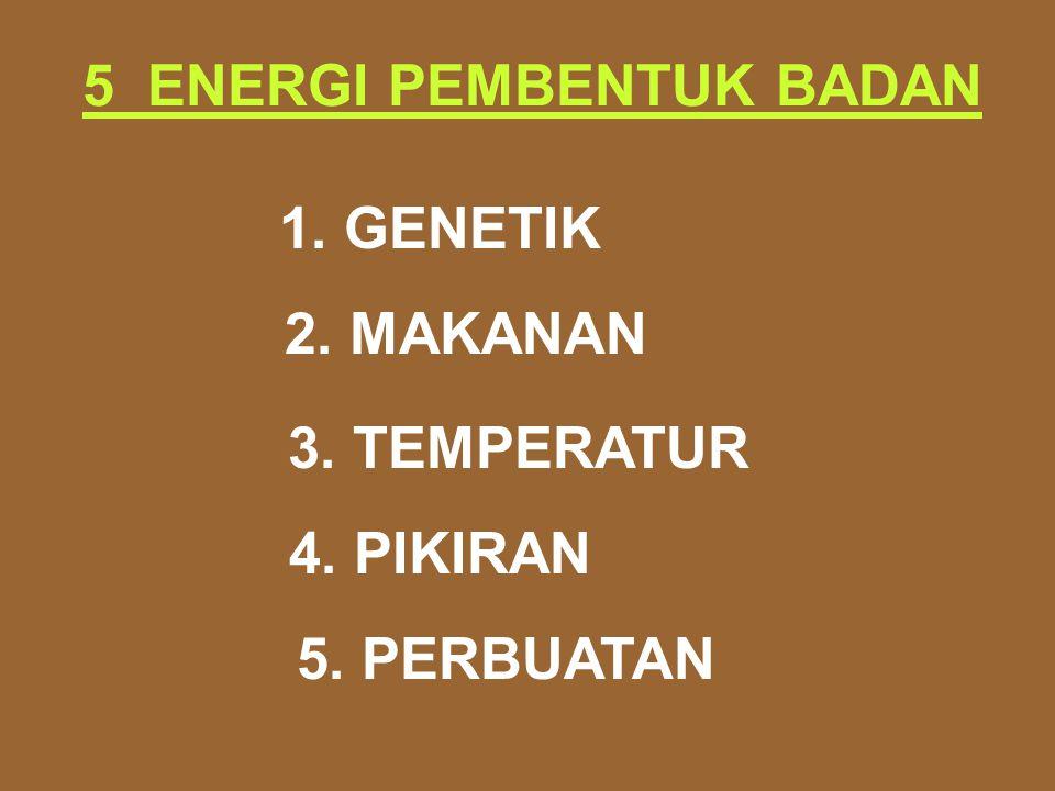 5 ENERGI PEMBENTUK BADAN