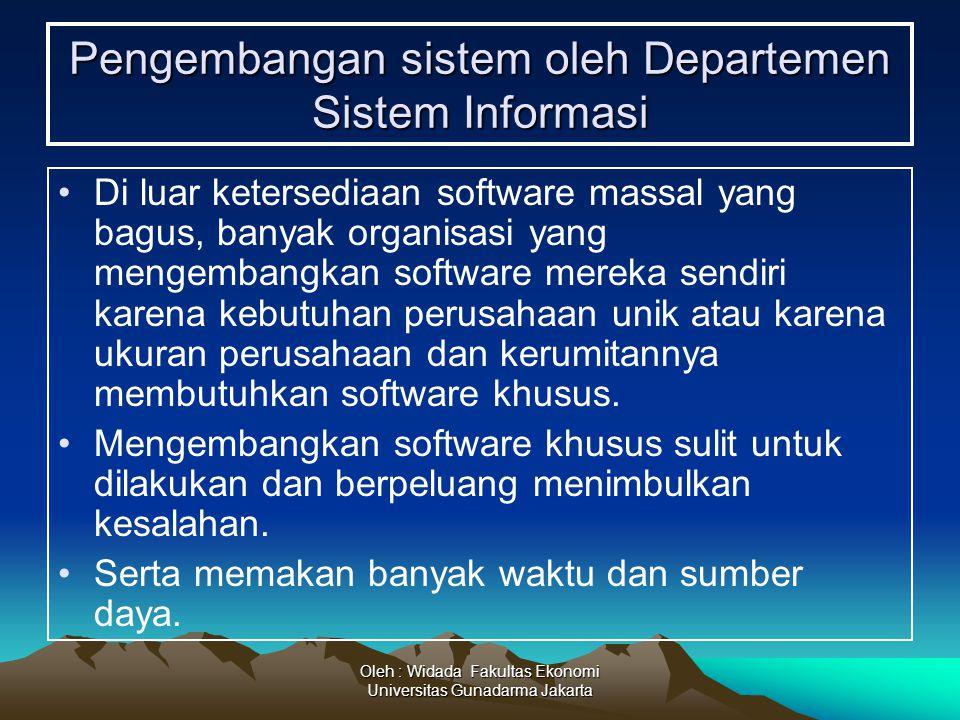 Pengembangan sistem oleh Departemen Sistem Informasi
