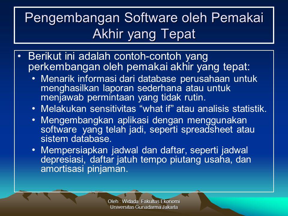 Pengembangan Software oleh Pemakai Akhir yang Tepat