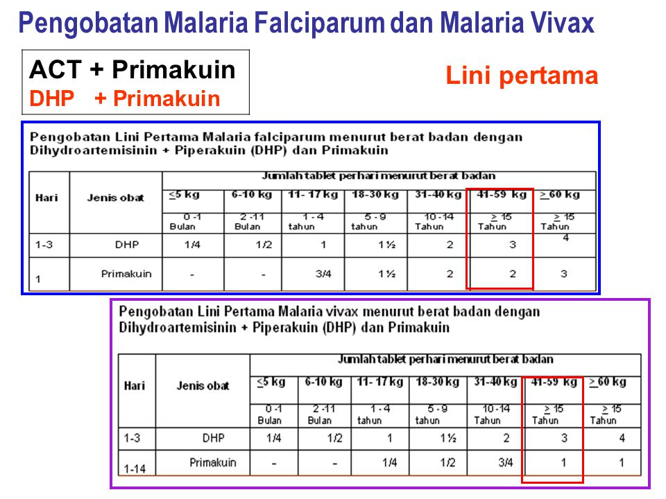 Pengobatan Malaria Falciparum dan Malaria Vivax
