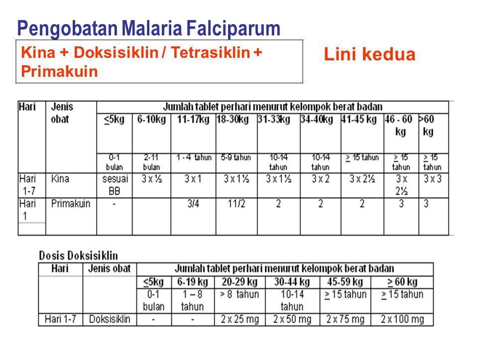 Pengobatan Malaria Falciparum