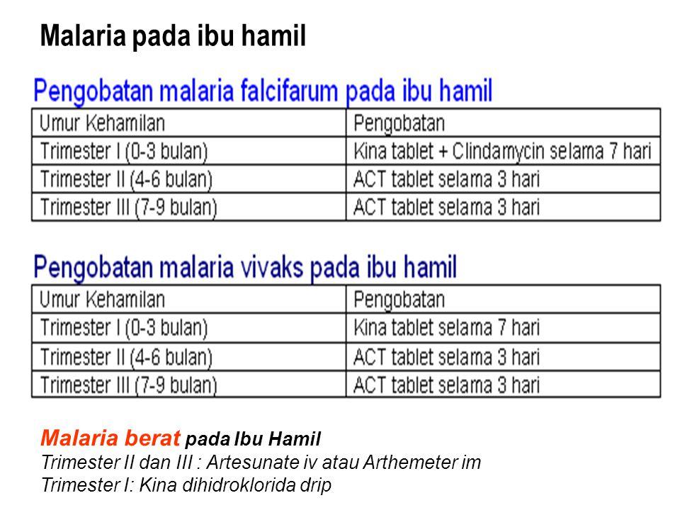 Malaria pada ibu hamil Malaria berat pada Ibu Hamil