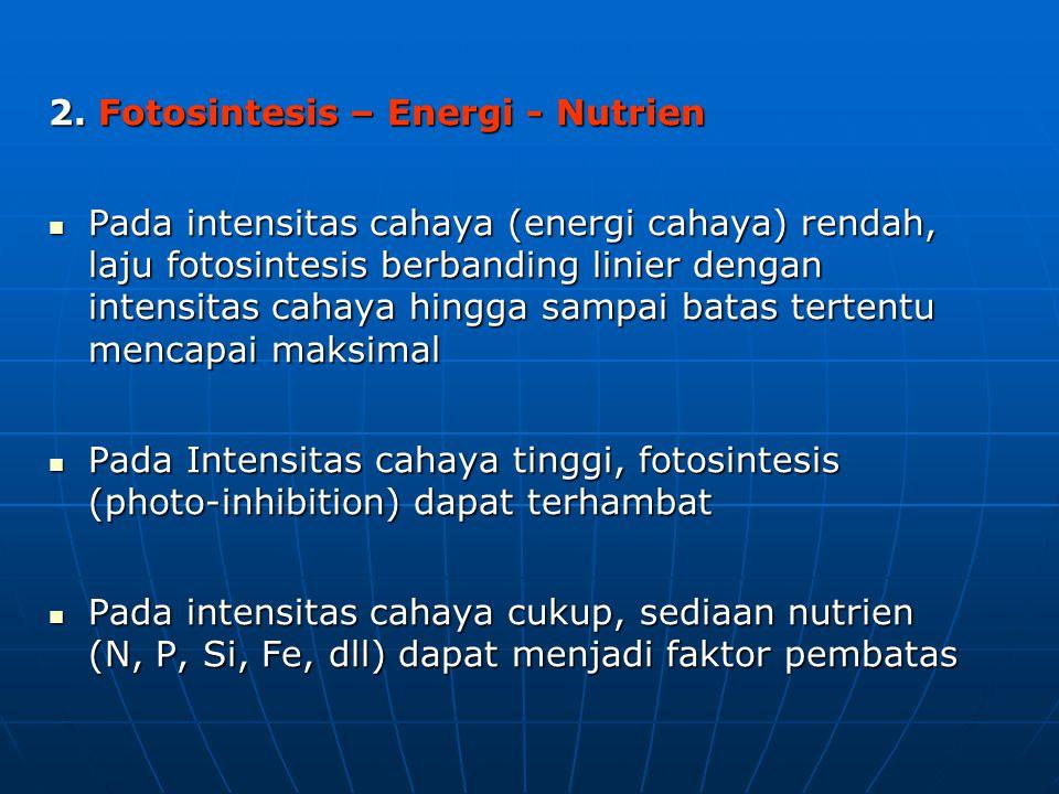 2. Fotosintesis – Energi - Nutrien