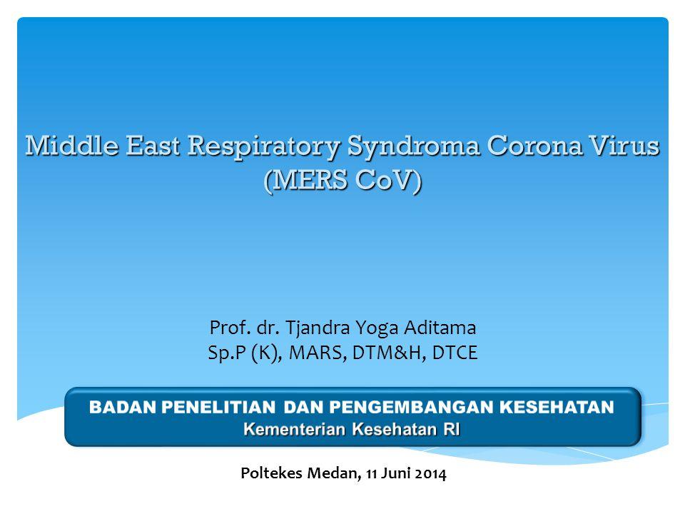 Prof. dr. Tjandra Yoga Aditama Sp.P (K), MARS, DTM&H, DTCE