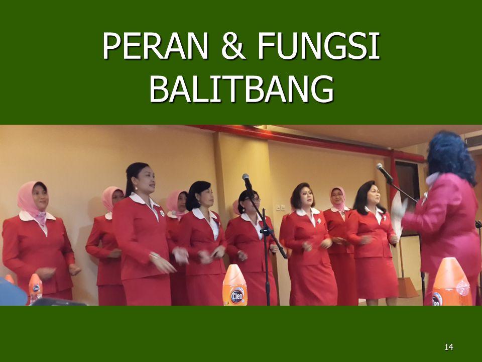 PERAN & FUNGSI BALITBANG