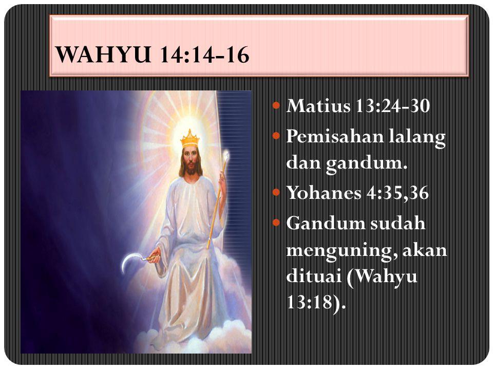 WAHYU 14:14-16 Matius 13:24-30 Pemisahan lalang dan gandum.