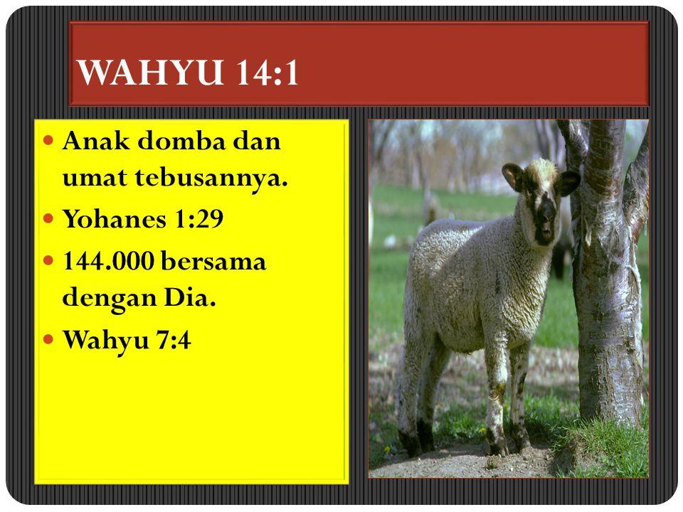 WAHYU 14:1 Anak domba dan umat tebusannya. Yohanes 1:29