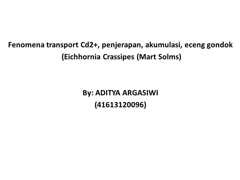Fenomena transport Cd2+, penjerapan, akumulasi, eceng gondok