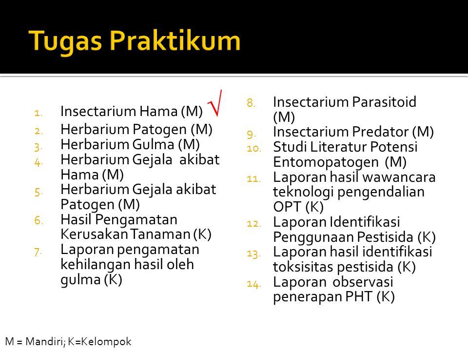 Tugas Praktikum Insectarium Hama (M)  Herbarium Patogen (M)