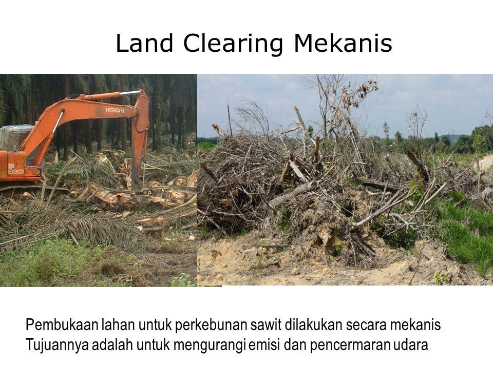 Land Clearing Mekanis Pembukaan lahan untuk perkebunan sawit dilakukan secara mekanis.