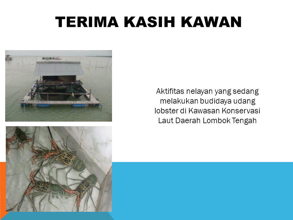 TERIMA KASIH KAWAN Aktifitas nelayan yang sedang melakukan budidaya udang lobster di Kawasan Konservasi Laut Daerah Lombok Tengah.