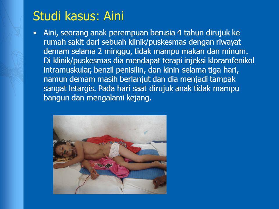 Studi kasus: Aini