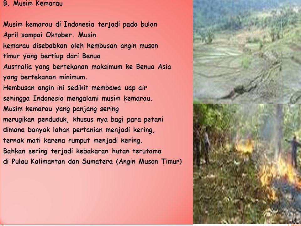 B. Musim Kemarau Musim kemarau di Indonesia terjadi pada bulan. April sampai Oktober. Musin. kemarau disebabkan oleh hembusan angin muson.