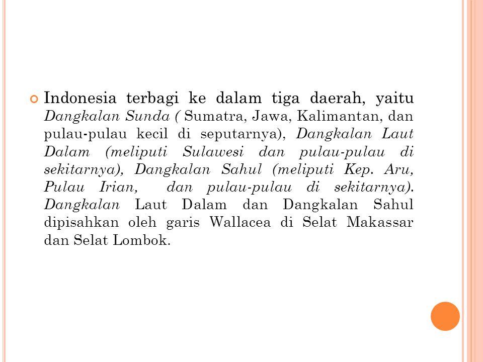 Indonesia terbagi ke dalam tiga daerah, yaitu Dangkalan Sunda ( Sumatra, Jawa, Kalimantan, dan pulau-pulau kecil di seputarnya), Dangkalan Laut Dalam (meliputi Sulawesi dan pulau-pulau di sekitarnya), Dangkalan Sahul (meliputi Kep.