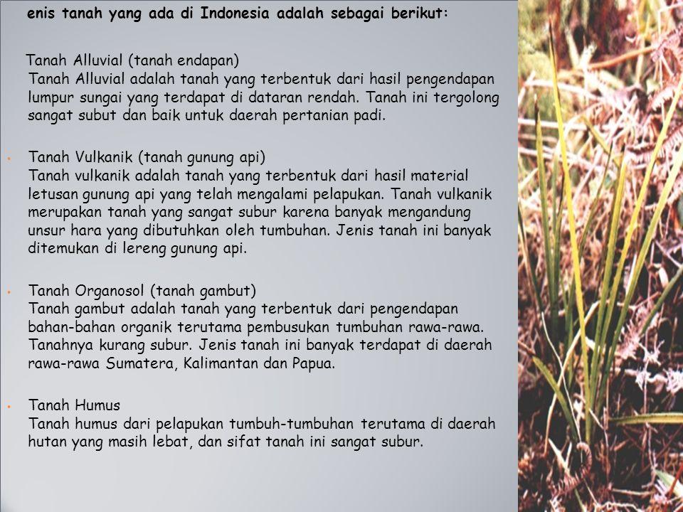 enis tanah yang ada di Indonesia adalah sebagai berikut: