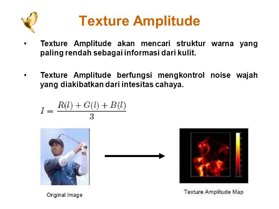 Texture Amplitude Texture Amplitude akan mencari struktur warna yang paling rendah sebagai informasi dari kulit.