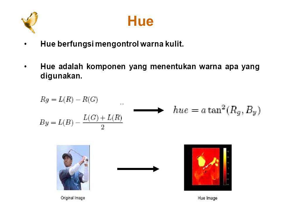 Hue Hue berfungsi mengontrol warna kulit.