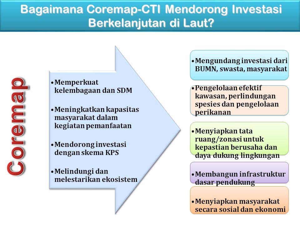 Bagaimana Coremap-CTI Mendorong Investasi Berkelanjutan di Laut