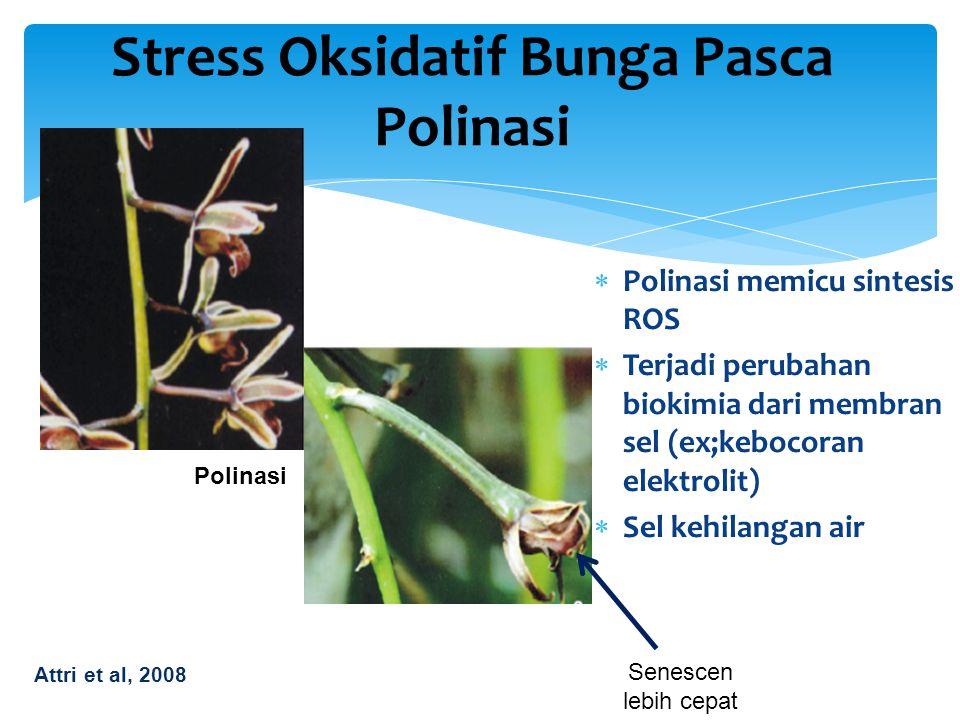 Stress Oksidatif Bunga Pasca Polinasi