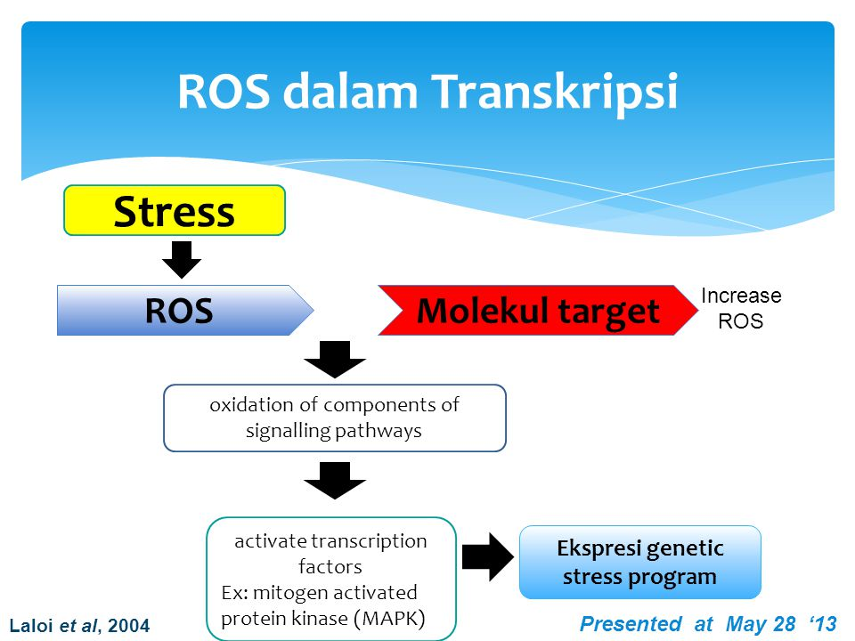 Ekspresi genetic stress program