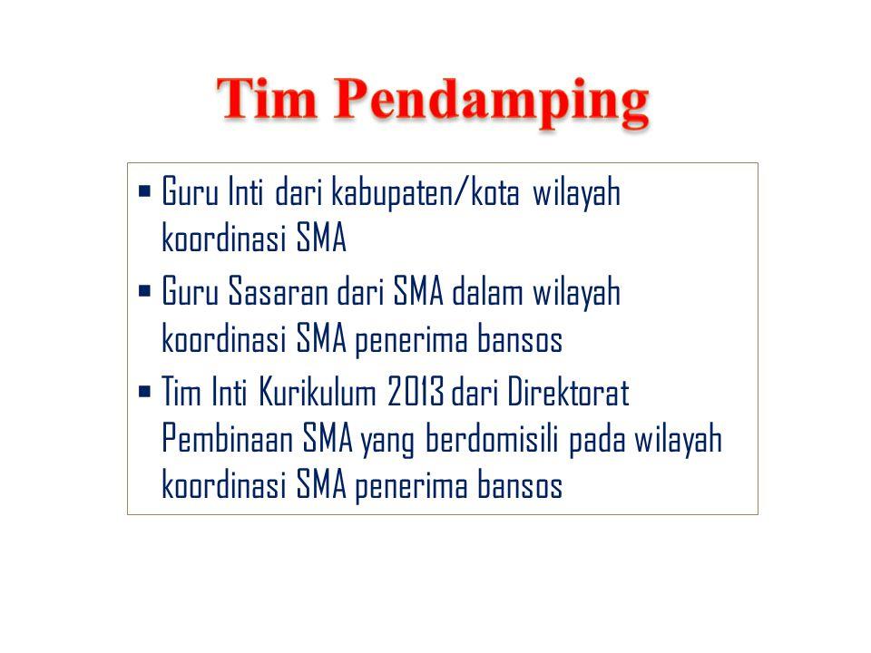 Tim Pendamping Guru Inti dari kabupaten/kota wilayah koordinasi SMA