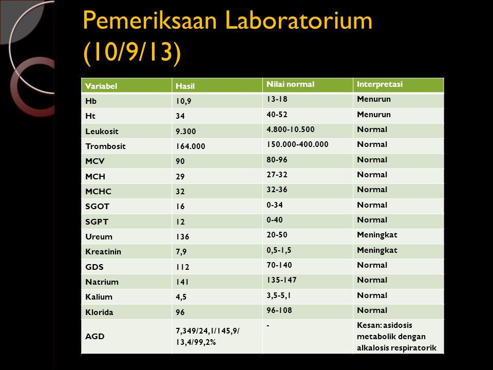 Pemeriksaan Laboratorium (10/9/13)