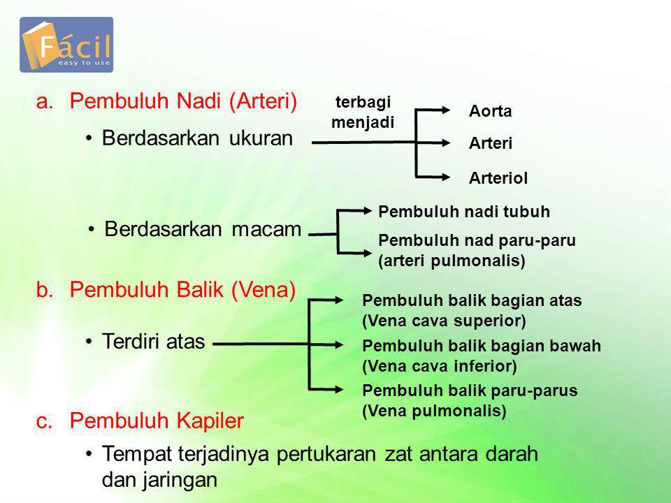 a. Pembuluh Nadi (Arteri)