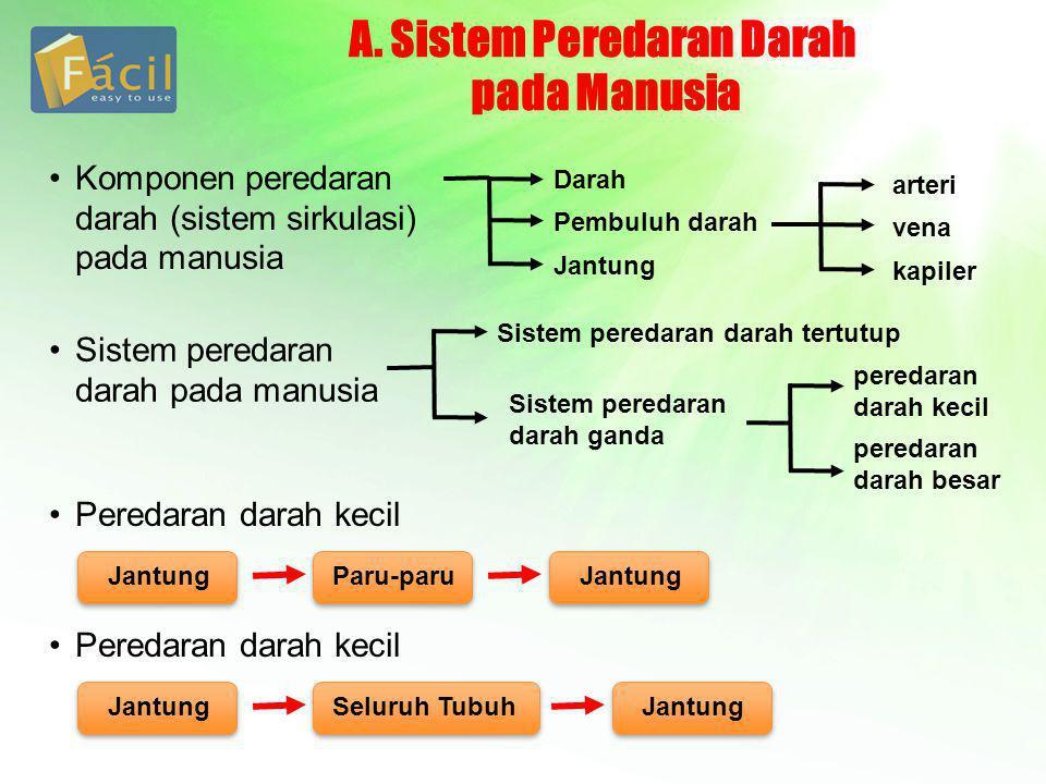 A. Sistem Peredaran Darah