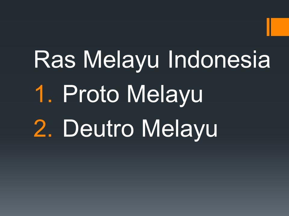Ras Melayu Indonesia Proto Melayu Deutro Melayu