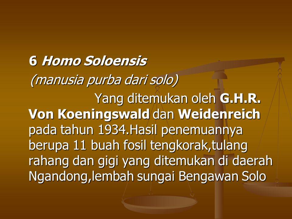 6 Homo Soloensis (manusia purba dari solo)