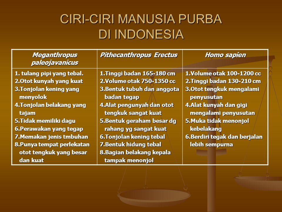 CIRI-CIRI MANUSIA PURBA DI INDONESIA